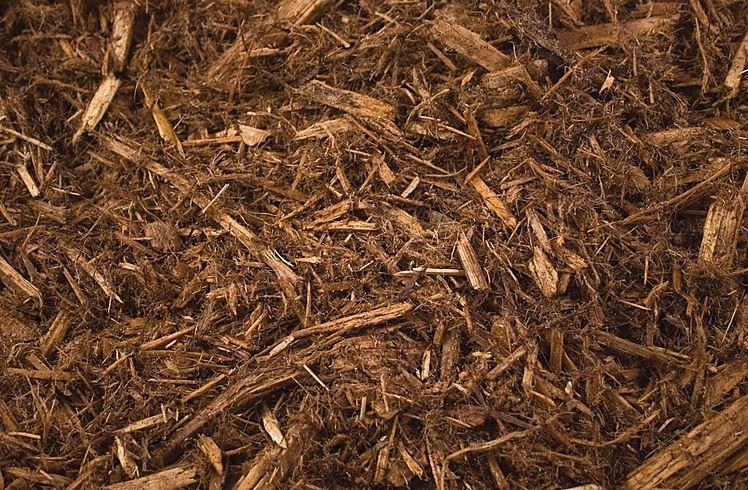 cypress mulch for vegetable garden