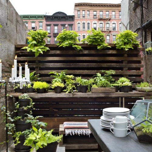 How to Make a Small Garden in an Apartment