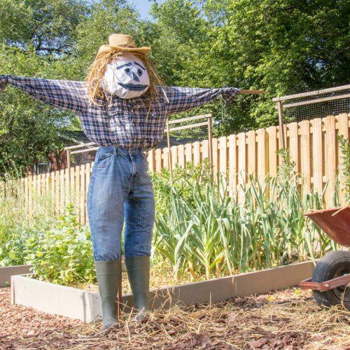 How to Make a Scarecrow for the Garden