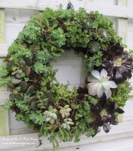Hanging Succulent Wreath Garden