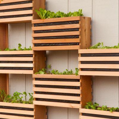 25 Vertical Garden Plans: Creative Ideas For Beginners