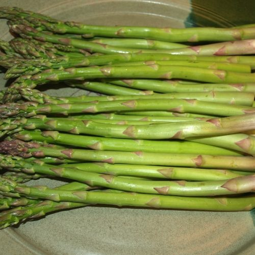 How to Grow Asparagus from Cuttings